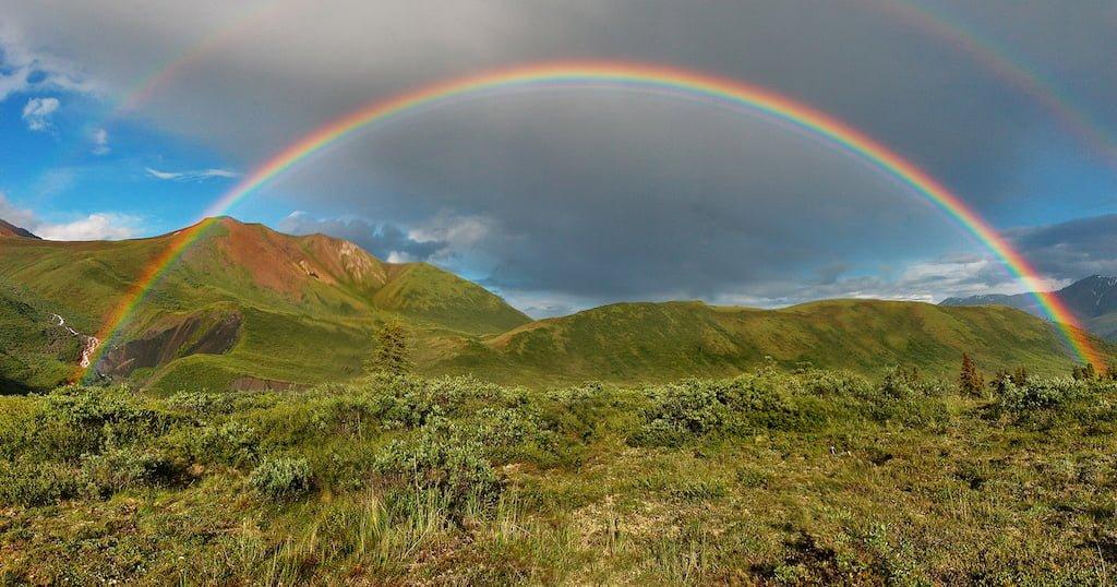 Rainbow Wanderer