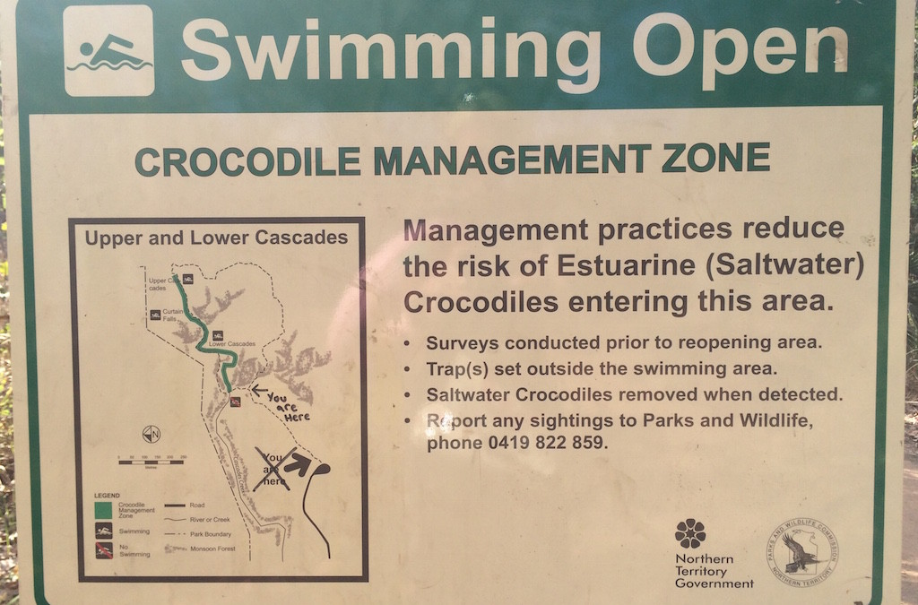 What Is Synchronised Drowning?